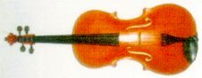 Ritterbratsche, the Ritter Viola - Wagner Society of Dallas, March 26, 2005